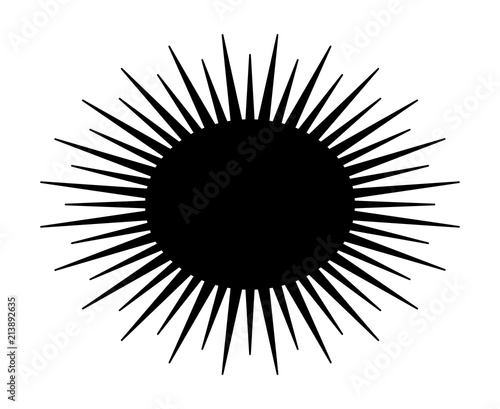 Spiny sea urchin marine animal flat vector icon for wildlife apps and websites Canvas Print