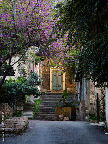 Fotografia Sunlit ancient door with trees and staircase near the Sursock Palace area in Bei