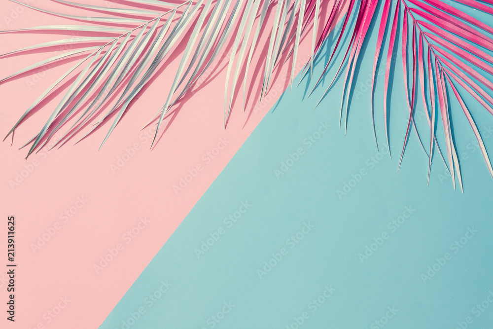 Fototapety, obrazy: Painted palm leaves on pastel pink and blue background with copy space. Tropical summer concept. Minimal flat lay.