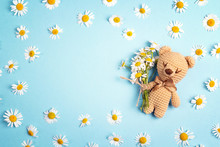Cute Toy Bear With Chamomile F...