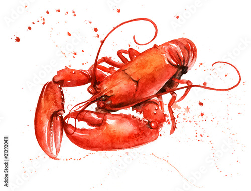 Obraz na plátně Lobster Watercolour