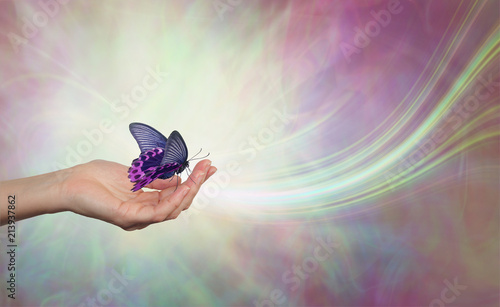 Be still and let life come to you - female hand open with a black and pink butterfly resting open winged against an ethereal energy background with a swish of white light