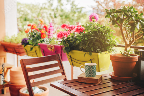 Canvas Print Cozy summer balcony with many potted plants, cup of tea and old vintage book