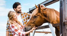 Couple Of Smiling Ranchers Palming Horse In Stable