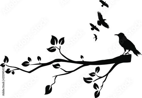 ast mit vögel silhouette - kaufen sie diese vektorgrafik