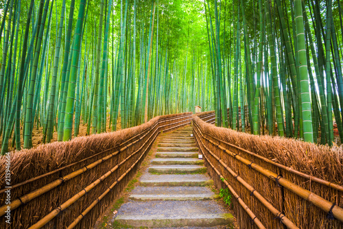 Poster de jardin Bambou Kyoto, Japan Bamboo Forest