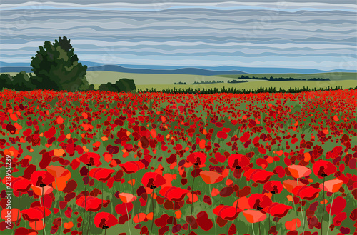 Fotografie, Obraz Bright poppy field with bushes, trees and blue sky vector illustration