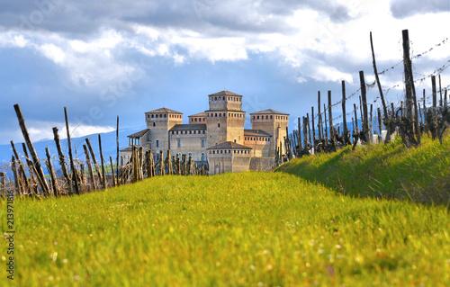 green landscape on hills around Parma and grass field near Torrechiara castle, Canvas Print