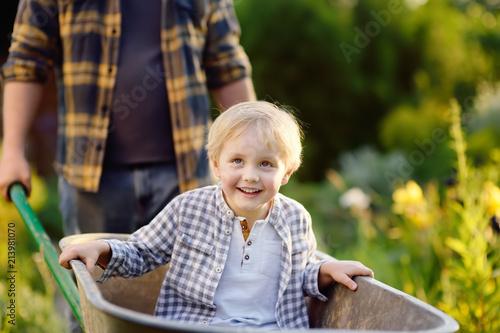 Wallpaper Mural Happy little boy having fun in a wheelbarrow pushing by dad in domestic garden