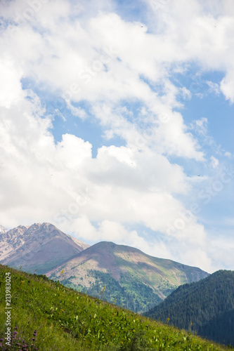 Tuinposter Blauwe hemel Mountains landscape of the Kaskelen gorge in the Tien-Shan Mountains, Almaty, Kazakhstan