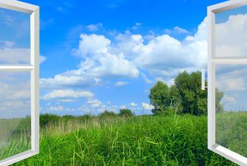 Otwarte okno na pole letnie. Naturalny krajobraz