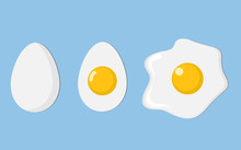 Three Eggs Closeup: Egg In She...