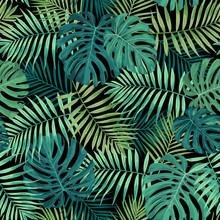 Tropical Leaf Design Featuring Green Palm And Monstera Plant Leaves On A Black Background. Seamless Vector Repeating Pattern.