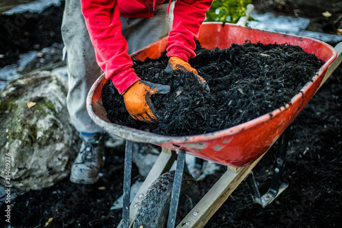 Fotografía  Man using his hands to take a load of wood chips inside a wheelbarrow as part of