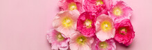 Summer Mallow Flowers Pink Bac...