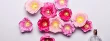 Women's Perfume Bottle And Pink Mallow Flowers. Minimalism Beaut