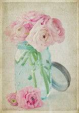 Vintage Style Textured Photograph Of Pink Eden Roses In A Turquoise Mason Jar