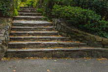 Rock Stairs In Central Park, N...