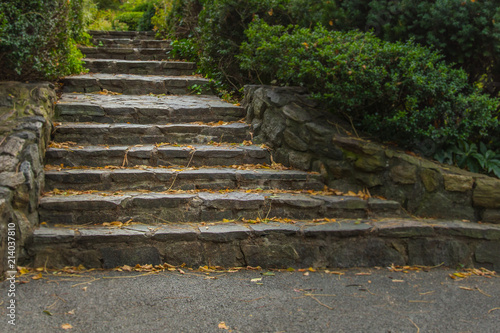 Rock stairs in Central Park, New York City