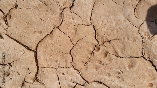 Fotografie, Obraz  cracked dry desert mud