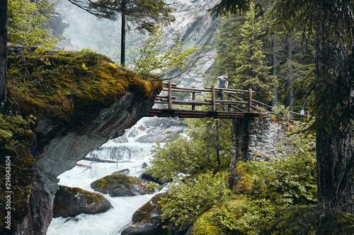 Naklejka premium Most leśny w Valle D'aosta