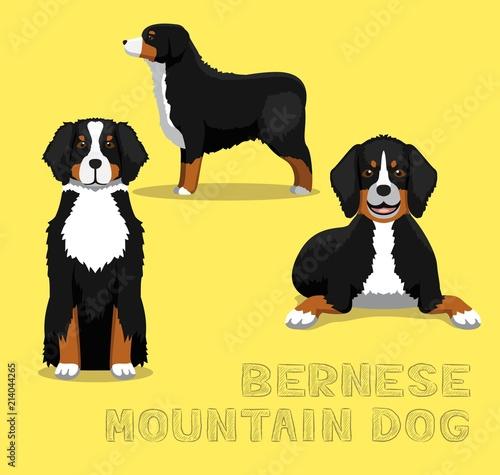 Photo Dog Bernese Mountain Dog Cartoon Vector Illustration