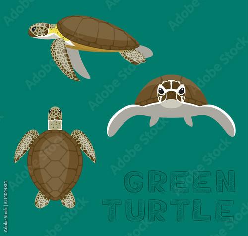 Naklejka premium Ilustracja wektorowa kreskówka Sea Green Turtle Loggerhead