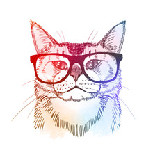 Cute Hipster - Cat In Retro Ne...