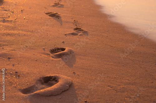 Spoed Foto op Canvas Zee zonsondergang summer beach background