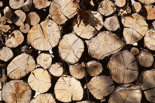 In de dag Brandhout textuur дрова лежат стопкой на природе