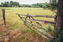Old Wooden Gate On A Pasturage...