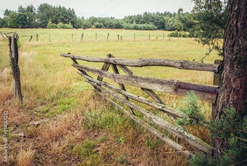 Old wooden gate on a pasturage in Masovian Voivodeship of Poland