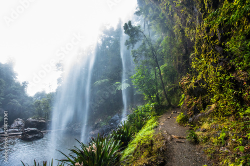 Under the Twin Falls in the Springbrook National Park, Australia Canvas-taulu