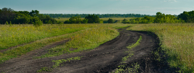 Fototapeta na wymiar Country abandoned road.   Bad conditions of road, meadow and trees