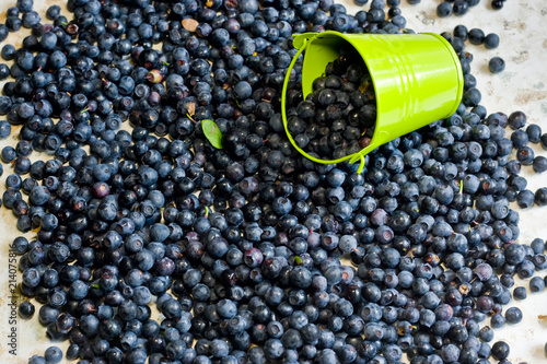 A lot of blueberries lie on the table
