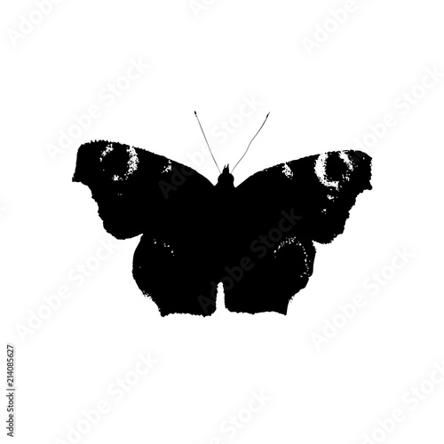 Foto op Plexiglas Vlinders in Grunge Silhouette of black butterfly isolated on a white background.