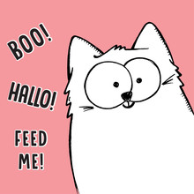 Vector Illustration Of Big White Cartoon Sketch Hand Drawn Cat  Curiously Peeking Out From Image Corner, Behind The Frame With Lettering Boo!, Hallo!, Feed Me! Hide And Seek Game
