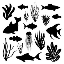 Seaweed And Sea Fish Set Of Ve...