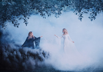 Two women yin yang in the fog. The Dark Magician meets a bright sorceress. Powerful witches conjure in the forest. Black and white smoke. Girls in the clouds. Artistic photography.