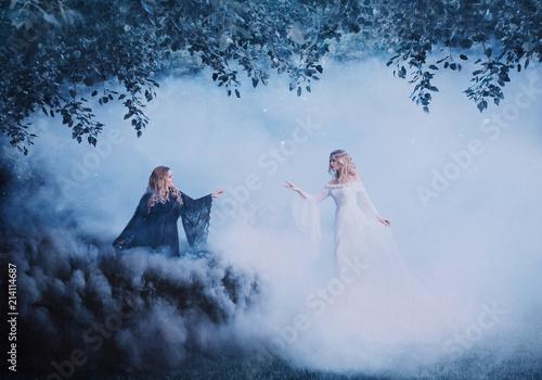 Two women yin yang in the fog Tablou Canvas