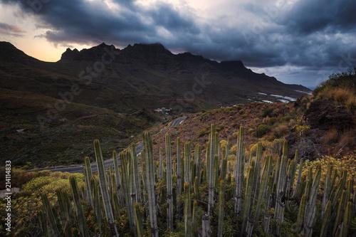Staande foto Zwart Gran Canaria landscapes
