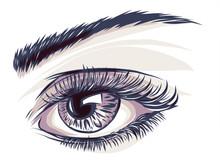 Occhio Vettoriale