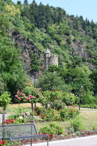 Fotobehang Olijf Blick vom Rhein über Promenade auf Braubach