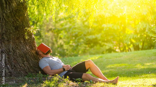Türaufkleber Gelb a young man is sleeping under the tree (weeping willow) with the book on his face