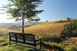 Bench overlooking hilly landscape