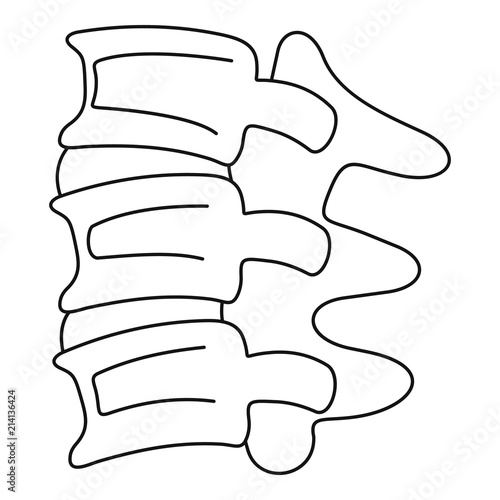 Fotografía  Spinal column discs icon