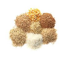 Different Types Of Grains And Cereals On White Background