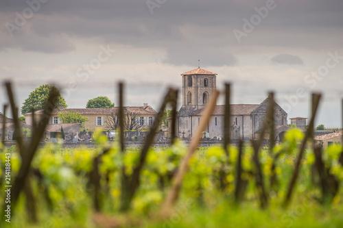 Vineyards of Saint Emilion, Bordeaux Vineyards Poster Mural XXL