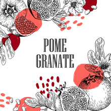 Hand Drawn Pomegranate Composition. Vector Engraved Illustration. Juicy Natural Fruit. Food Healthy Ingredient. For Cooking, Cosmetic Package Design, Medicinal Herb, Treating, Healt Care.