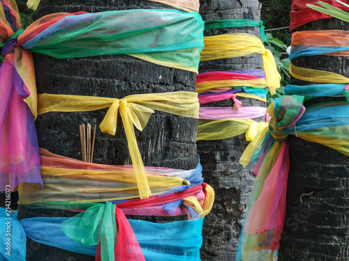 Deurstickers Paradijsvogel Multicolored ribbons wrapped around holy and sacred trees near buddhist temple in Thailand